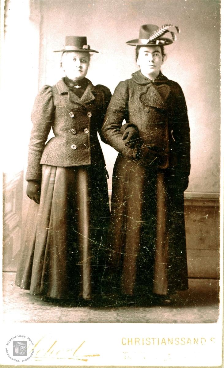 Portrett av to unge damer i fin reisestas. Bransdal Grindheim.