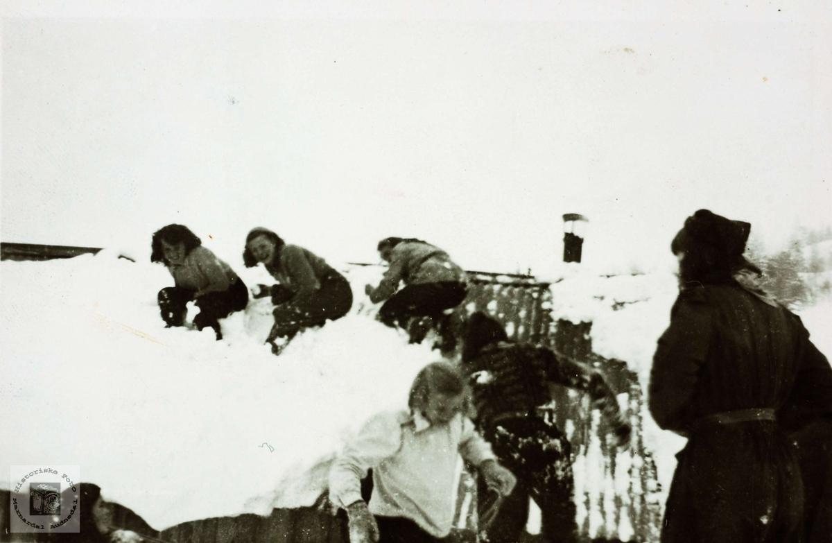 Snøballkrig fra hustaket på Løland i Grindheim.