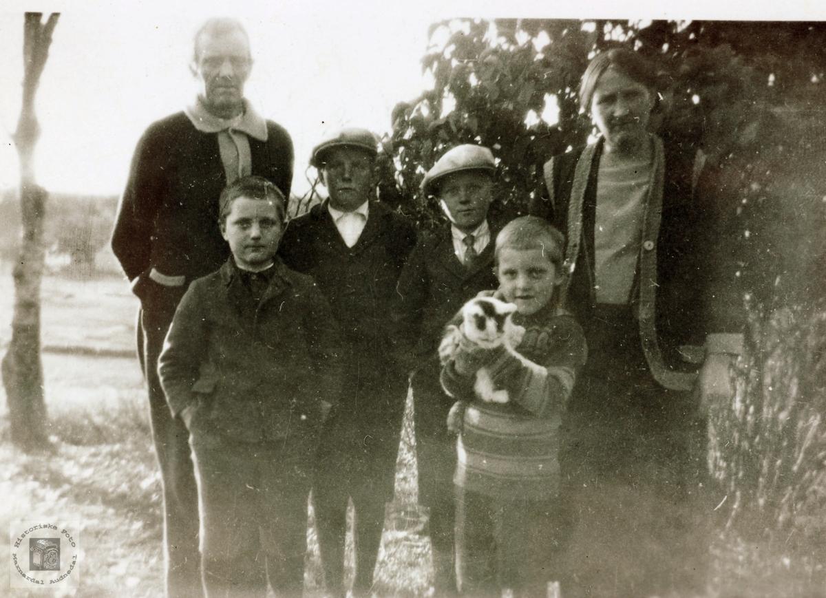 Familien Sveindal i Vollen på Sveindal, Grindheim senere Audnedal.