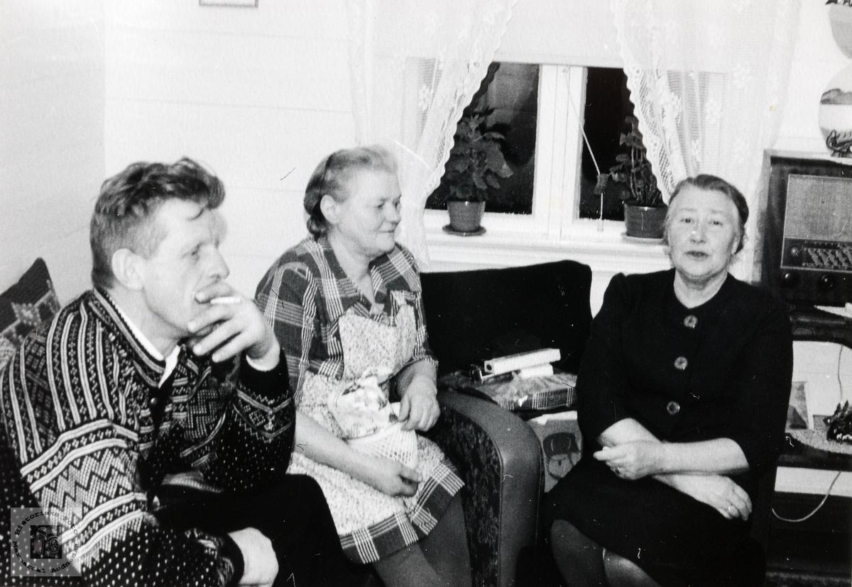 Kristian, Inger og Tora Flåt samlet i stua. Audnedal.