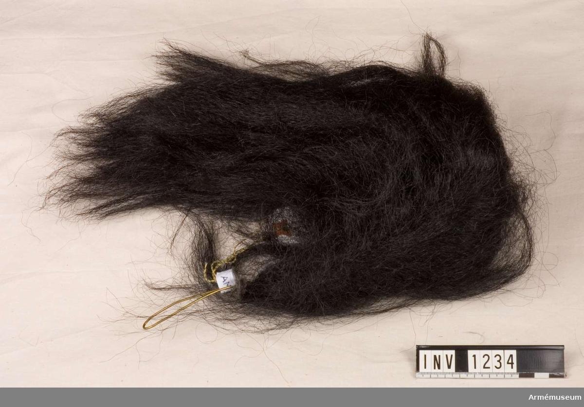 Svart tagelplym att bäras till parad. Taglet är fastsatt i bandform och virat i spiral mot en ca 200 mm hög stomme. G.O. d.13 sept 1865 nr 660. Källa: Arméns rulla 1900.