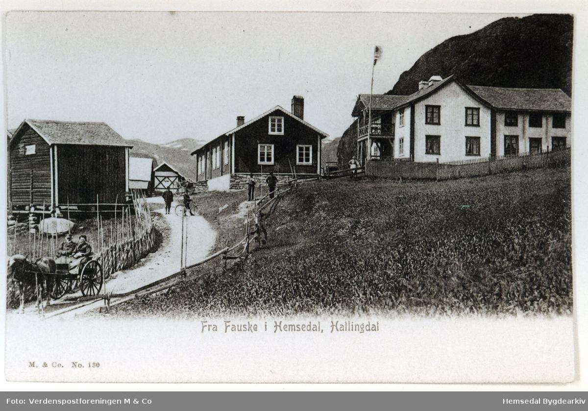 Fausko Skysstasjon i Hemsedal i 1908.