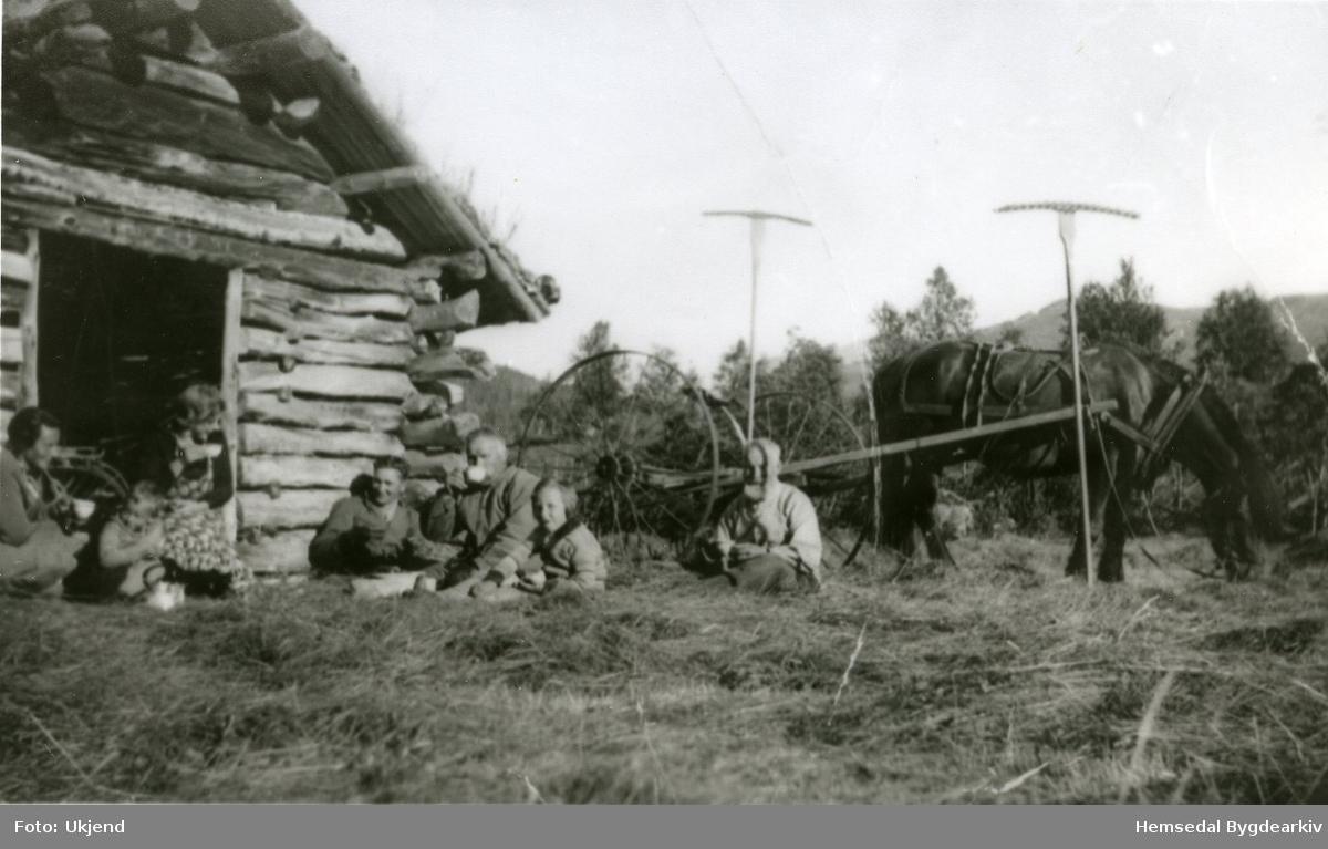 Ved ei løe på Fagerset i Hemsedal. Frå venstre : Fru Magnesen; Bjørn Magnesen; Barbro Viljugrein; Lars Egil Viljugrein; Svein Viljugrein (nordre); Rømaug Magnesen; Arne Viljugrein (nordre).