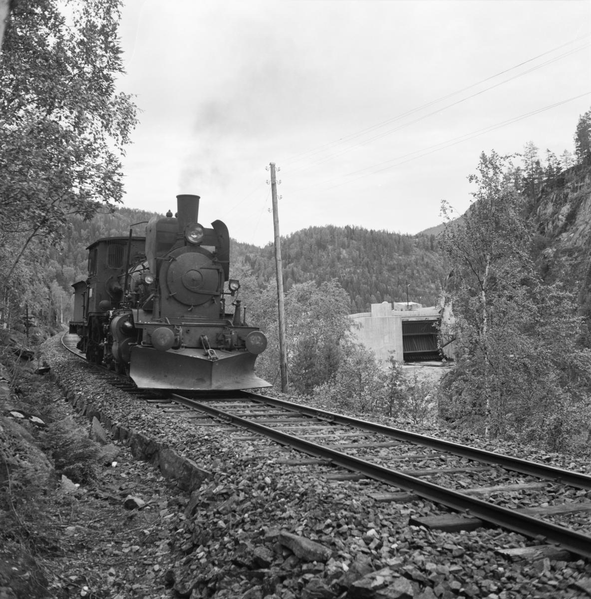 Damplokomotiv 21e 207 på på Numedalsbanen.