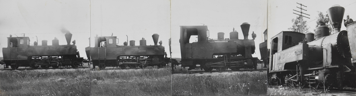 Tre av Urskog-Hølandsbanens damplokomotiver er trukket ut på linjen for fotografering.