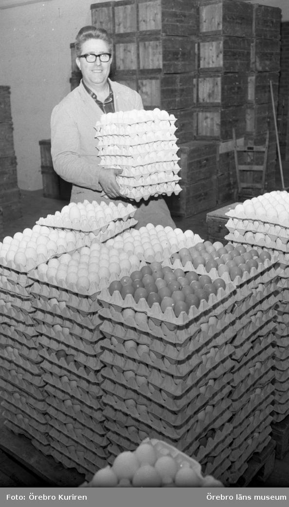 Jordbruksnummer, 12 mars 1969.Äggproducenter konkurrerar ihjäl varandra. Fler äter ägg men mindre lönsamhet.