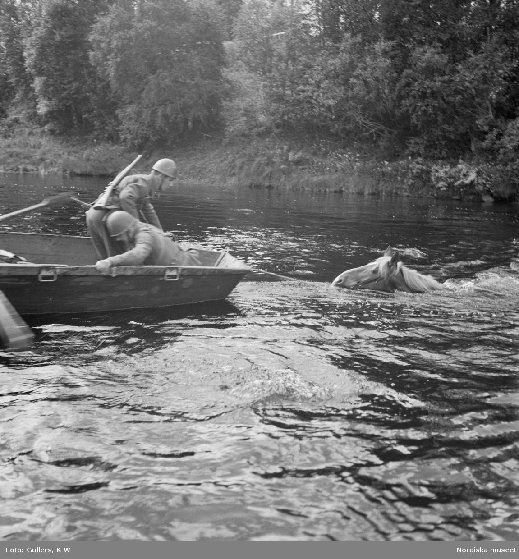 Soldater i båt med en simmande häst bakom