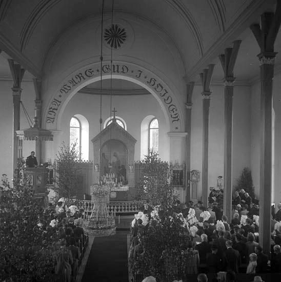 Foto av folksamling i kyrka. Vederslöv.Christina Nilsson-jubileet 1943. Redan 1851 beslutades att en ny kyrka skulle uppföras och sammanbyggas med Dänningelanda församling. Men Dänningelanda församling som 1750 uppfört en ny träkyrka efter en brand var inte intresserade att delta i kyrkbygget. 1872 fastställdes till sist genom kunglig resolution beslut om gemensam kyrka för de båda församlingarna och platsen för den nya kyrkan bestämdes till Vederslöv strax norr om den gamla kyrkan. Den nya kyrkan som är uppförd 1878-79 präglas av den nyklassicistiska stilen, men med tydliga historicerande stildrag av nygotik och nyromantik ritades av Edvard von Rothstein. Detta tar sig i uttryck i form av ett spetsigt torn, höga fönster, altarskrank och en öppen bänkinredning. Kyrkan invigdes den 10 oktober 1879 av biskop Johan Andersson.