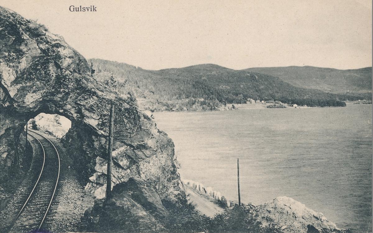 Parti fra Bergensbanen ved Gulsvik.
