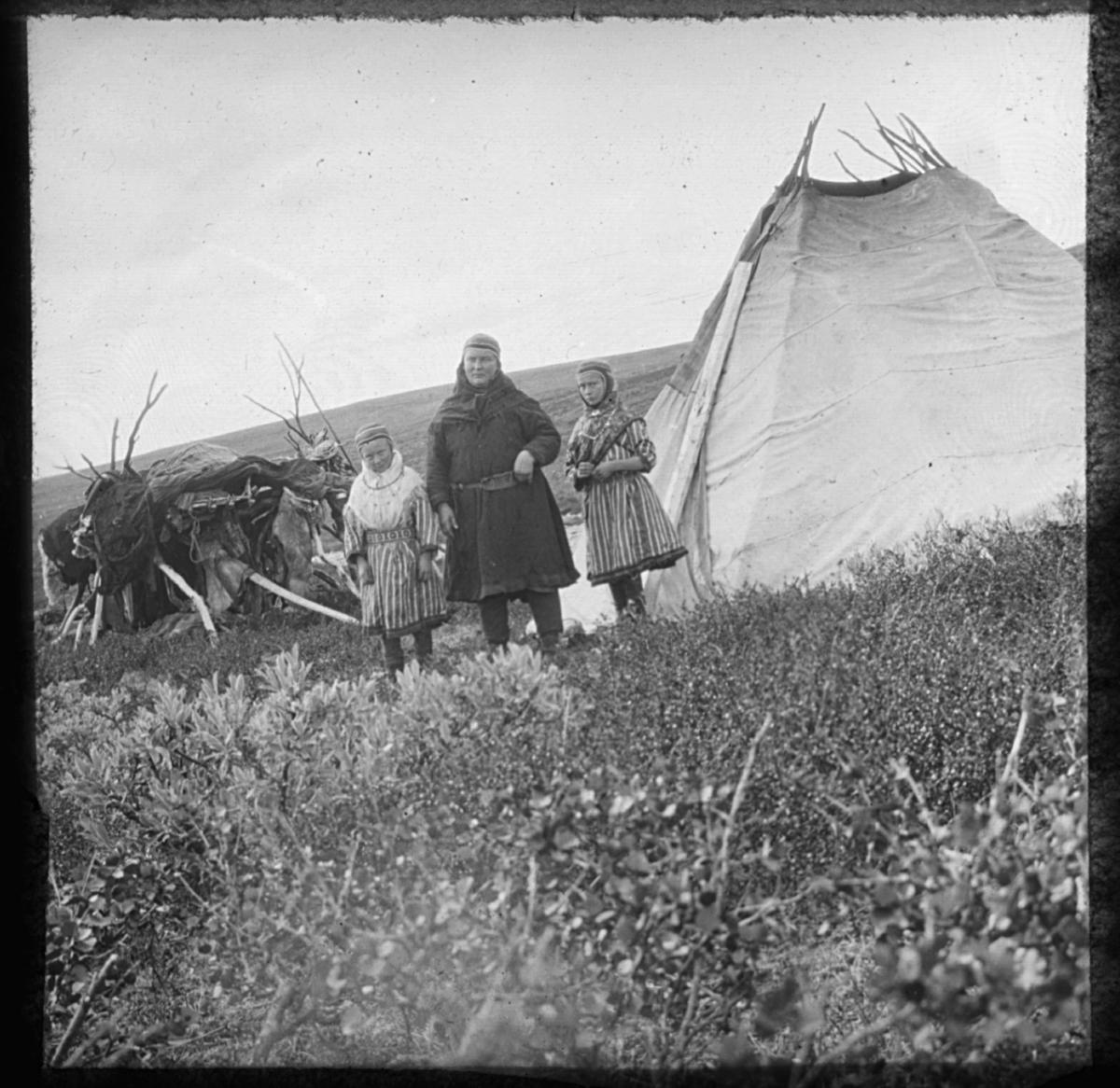 """""""N.361.) Sommertelt."""" står det på glassplaten. Portrett ved sametelt. En samisk kvinne og to samiske jenter står ved et sametelt. Teltet er bygget av bjørkestammer trukket med lerret. Kvinnene er kledd i samekofter med sjal ogluer. I livet har de samiske belter. I bakgrunnen skimtes vidda og til venstre i bildet er det en haug med det som sansynligvis er reinsdyrskinn og tekstiler, mulig er det garvet skinn som henger til tørk."""