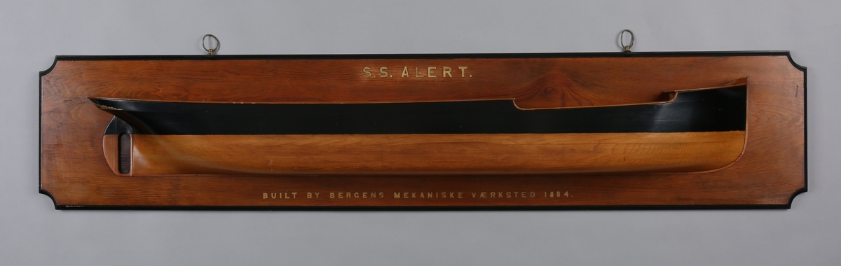 Halvmodell av DS ALERT montert på treplate.