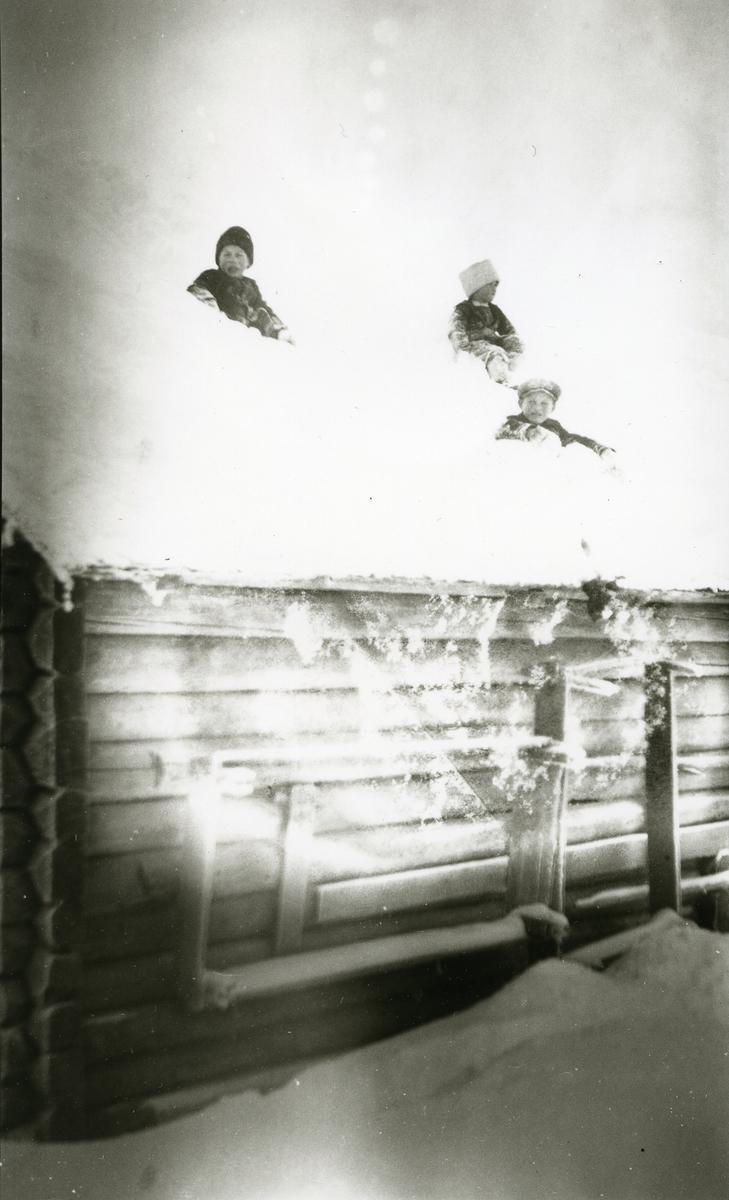 Unger leker seg i snøen oppå hustak (tømmerhus) i Galåsen.