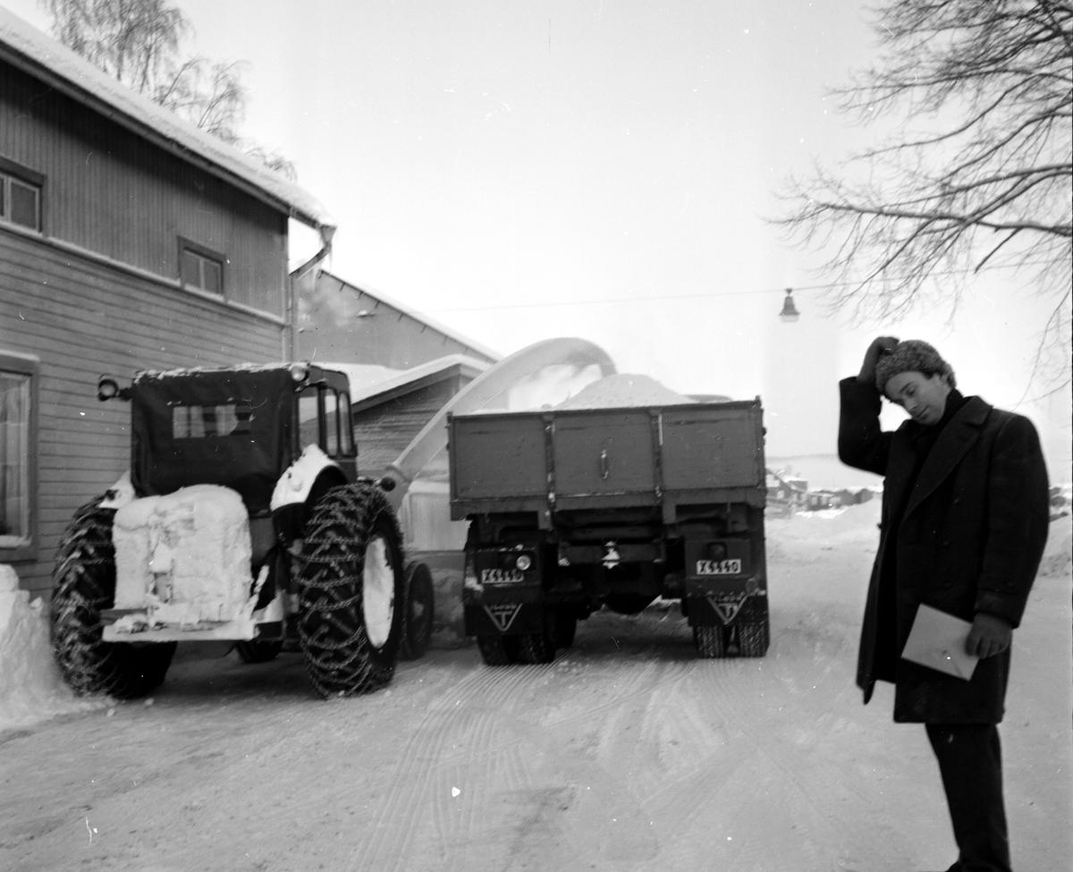 Snöslunga, 21 December 1965
