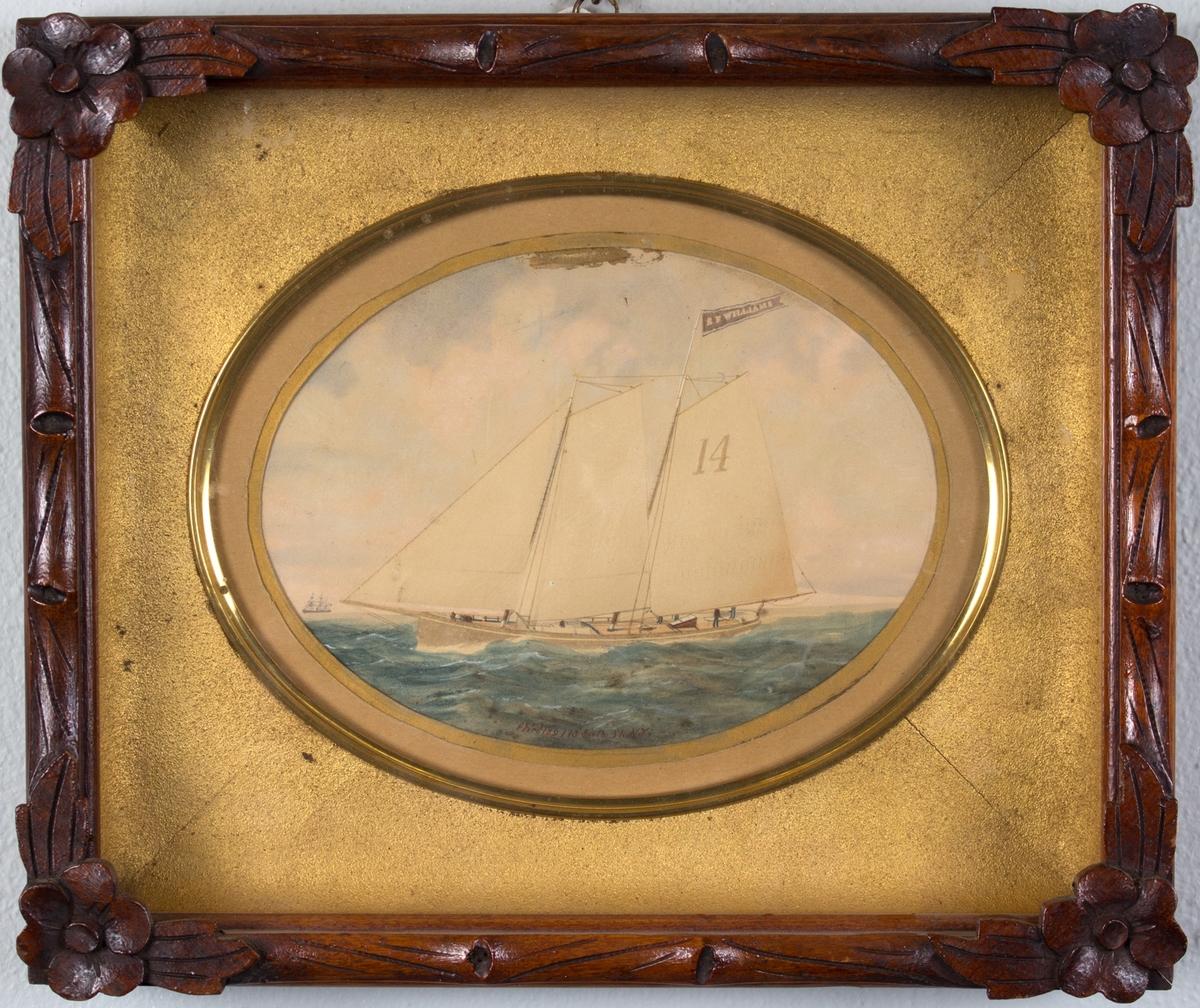 Skipsportrett av losbåten E. F. WILLIAMS fra New York. I bakgrunnen en bark.