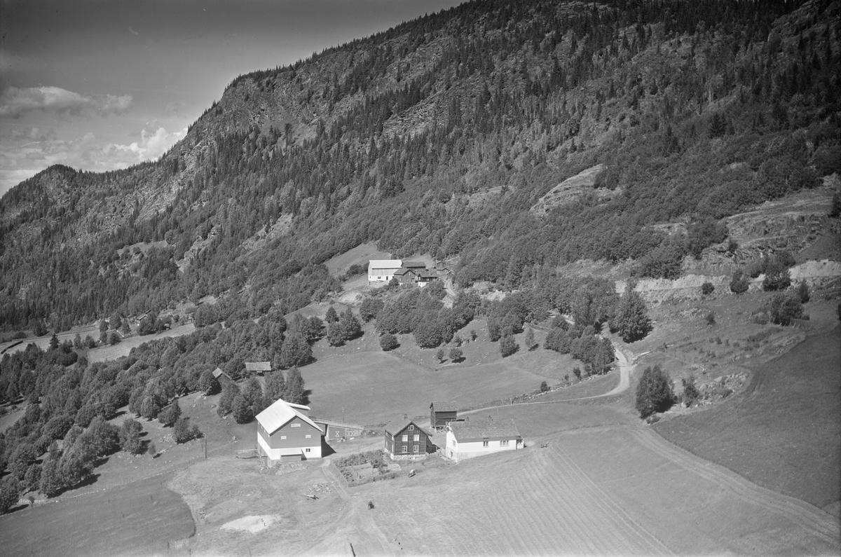 To ukjente gårder i li, Øyer, stabbur, jordbruk, vei, kupert landskap, blandingsskog