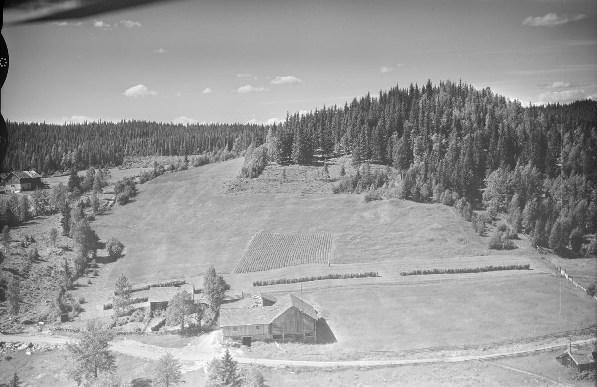Ukjent gård i li, Øyer, en annen gård i nærheten,  jordbruk, blandingsskog/granskog