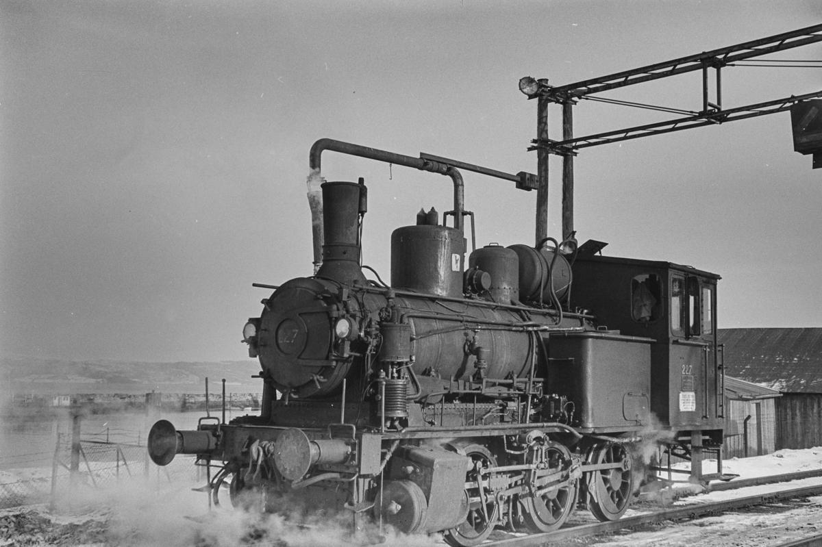 Damplokomotiv type 25a nr. 227 i skiftetjeneste på Trondheim stasjon.