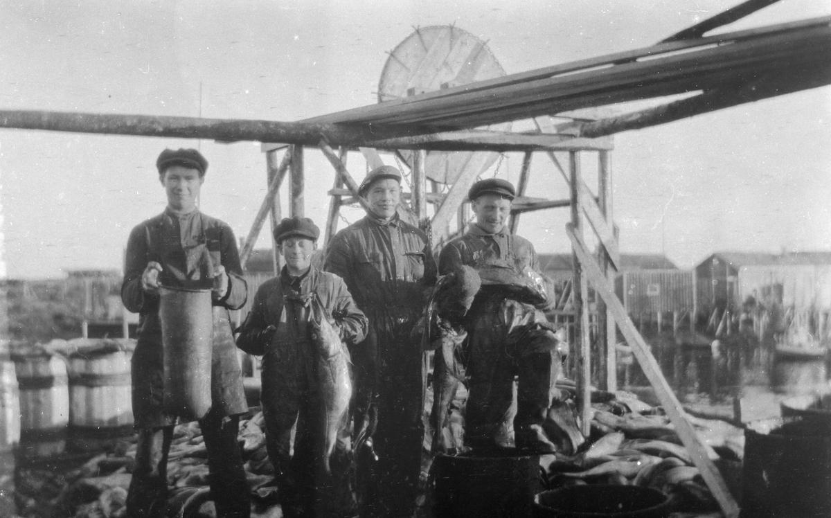 Arbeid på fiskebruk.