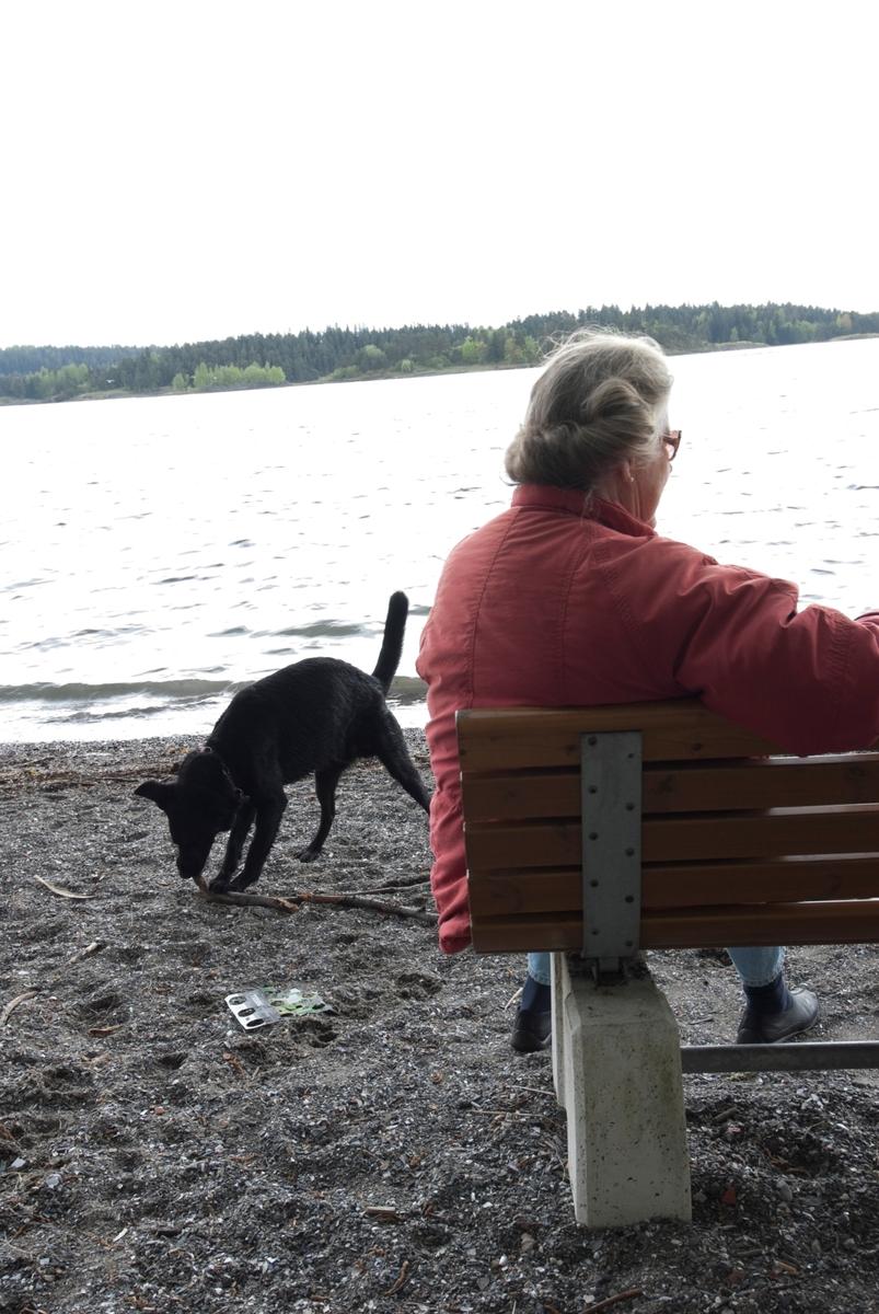 Hunden Chico på tur leker med en pinne mens eieren hviler seg på en benk.