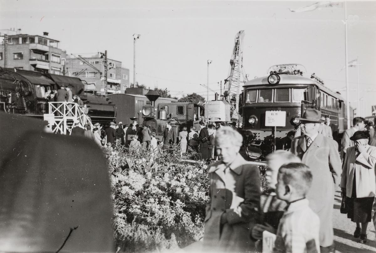 """NSBs 100 års jubileumsutstilling i Oslo i september 1954. NSBs damplokomotiv type 49a 464 Dovregubben til venstre, damplokomotiv type III nr. 21 """"Alf"""" og elektrisk lokomotiv type El 11."""