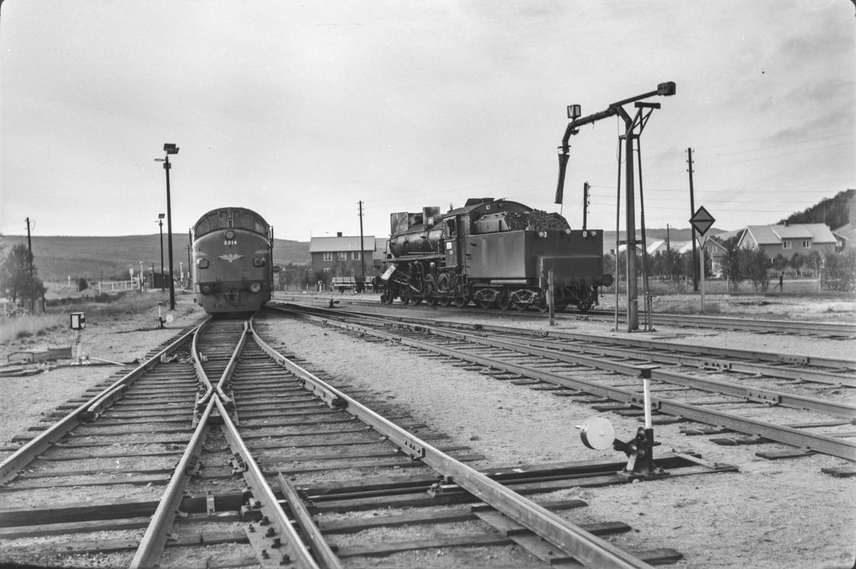 Vannfylling på damplokomotiv type 26b nr. 229 på Røros stasjon. Til venstre diesellokomotiv type Di 3 nr. 614.