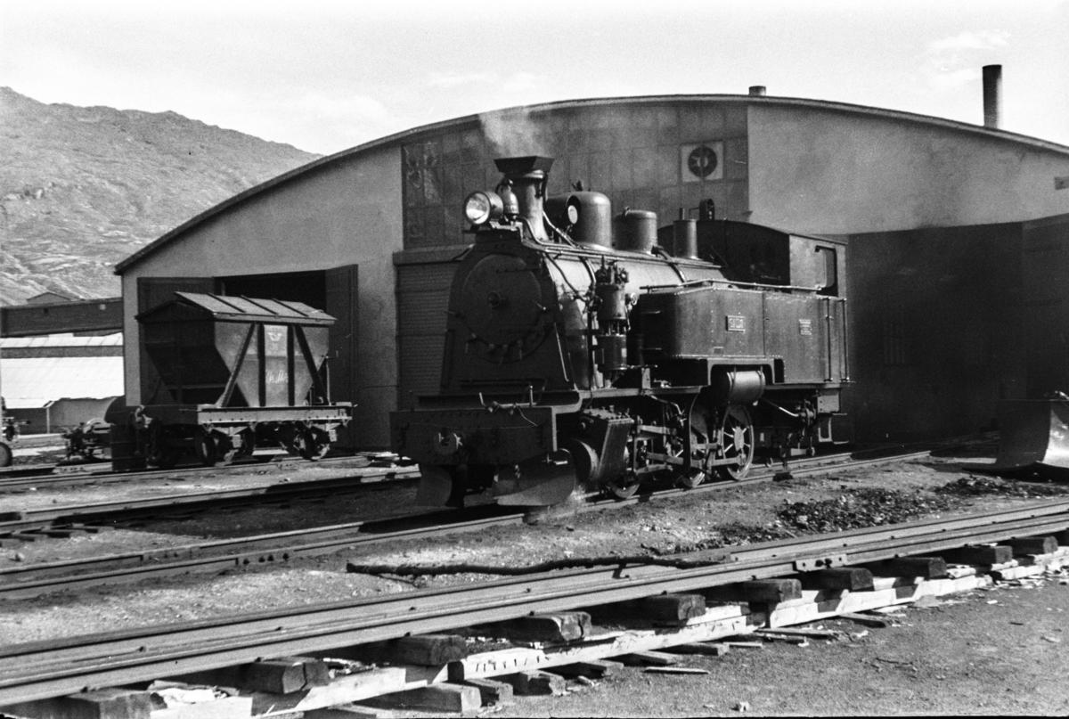 Sulitjelmabanens damplokomotiv SAULO ved lokomotivstallen i Lomi.