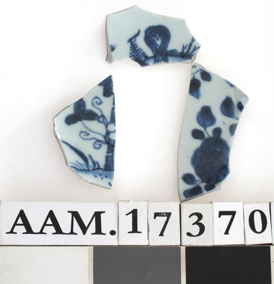 """a) Stor tett blå blomst  med """"dotte"""" blad.   b) stamme med grener og trekløverblad.   c) Soppliknende vekst og bregne.  d) Litt av en blå blomst"""