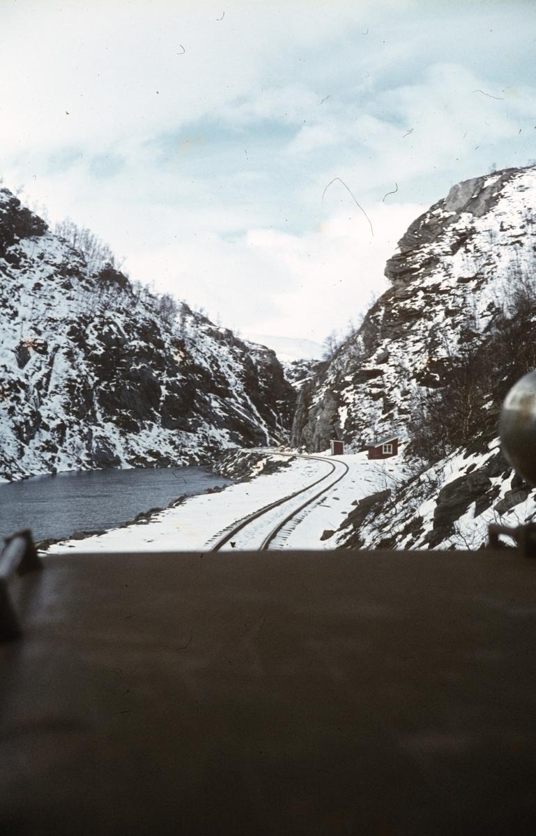 Utsikt fra lokomotivet på Sulitjelmabanen, underveis mellom Finneid og Lomi.