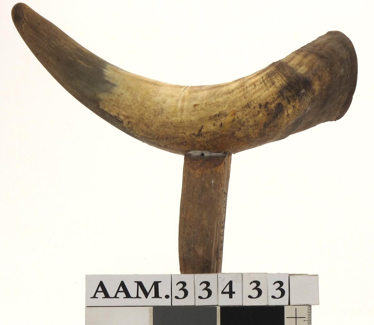 Horn tettet med kork i åpen ende, innfelt pinne for feste i båtripa.
