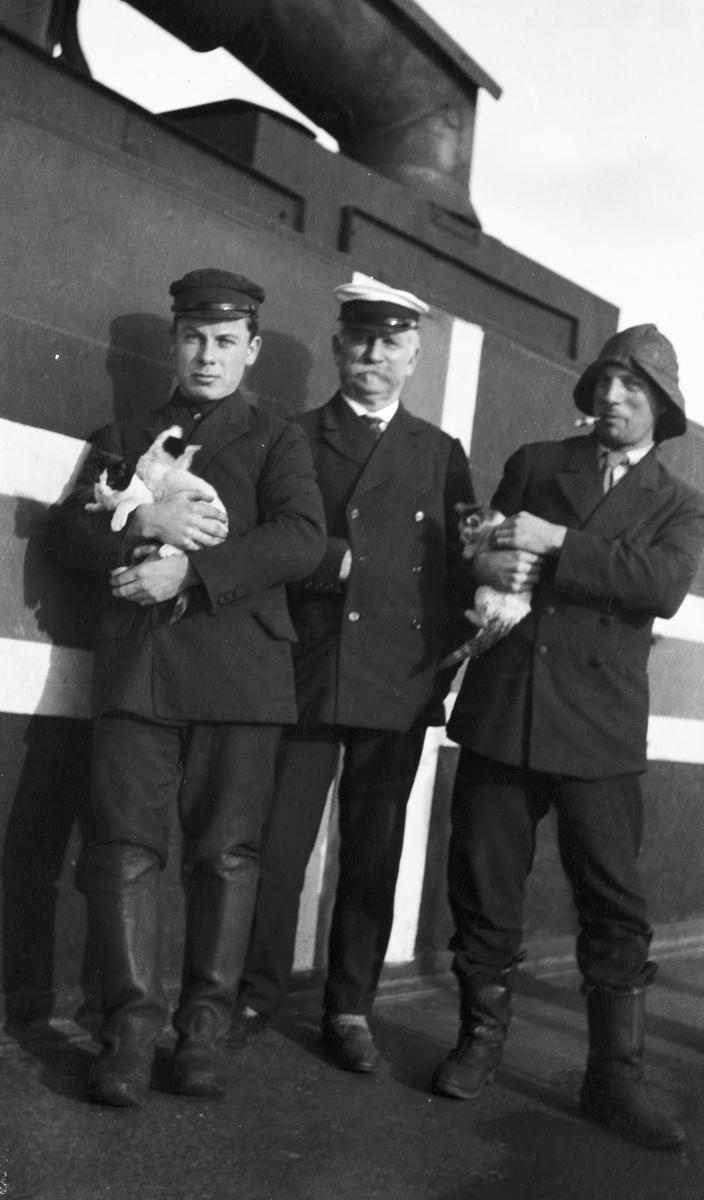 Brødrene Waage holder på kattunger, kaptein Waage i midten. De er avfotografert midskips på DS STORFOND, foran norsk nøytralitetsflagg.