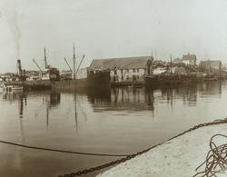 Stoltenberg (Hønå), Risøy, sett mot nordvest, ca. 1939.