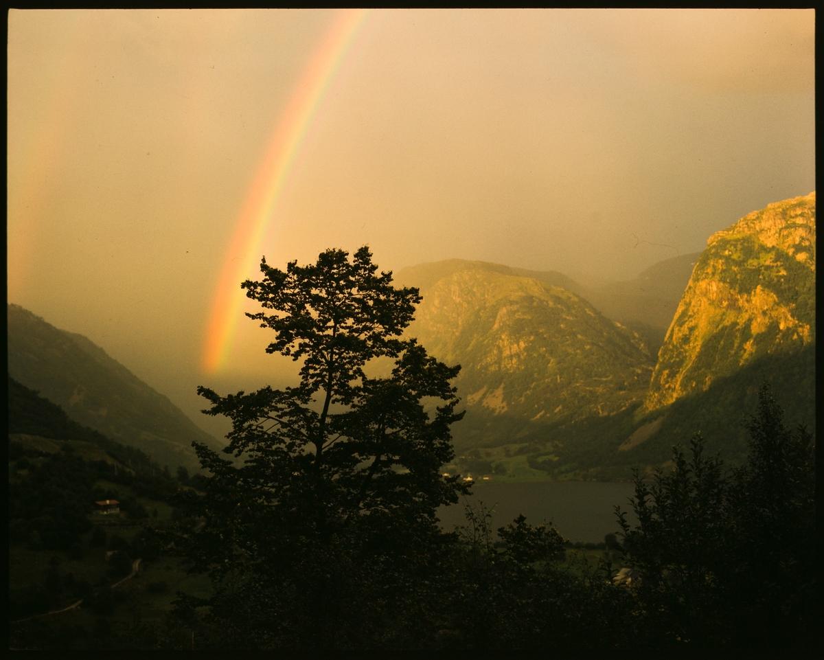Regnbue over Frette i Stordalen. Nordfjellet er til høyre og Frettshovda er midt i bildet.