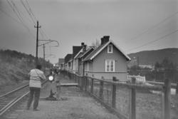 Fra Thamshavnbanen mellom Thamshavn og Orkanger stasjoner