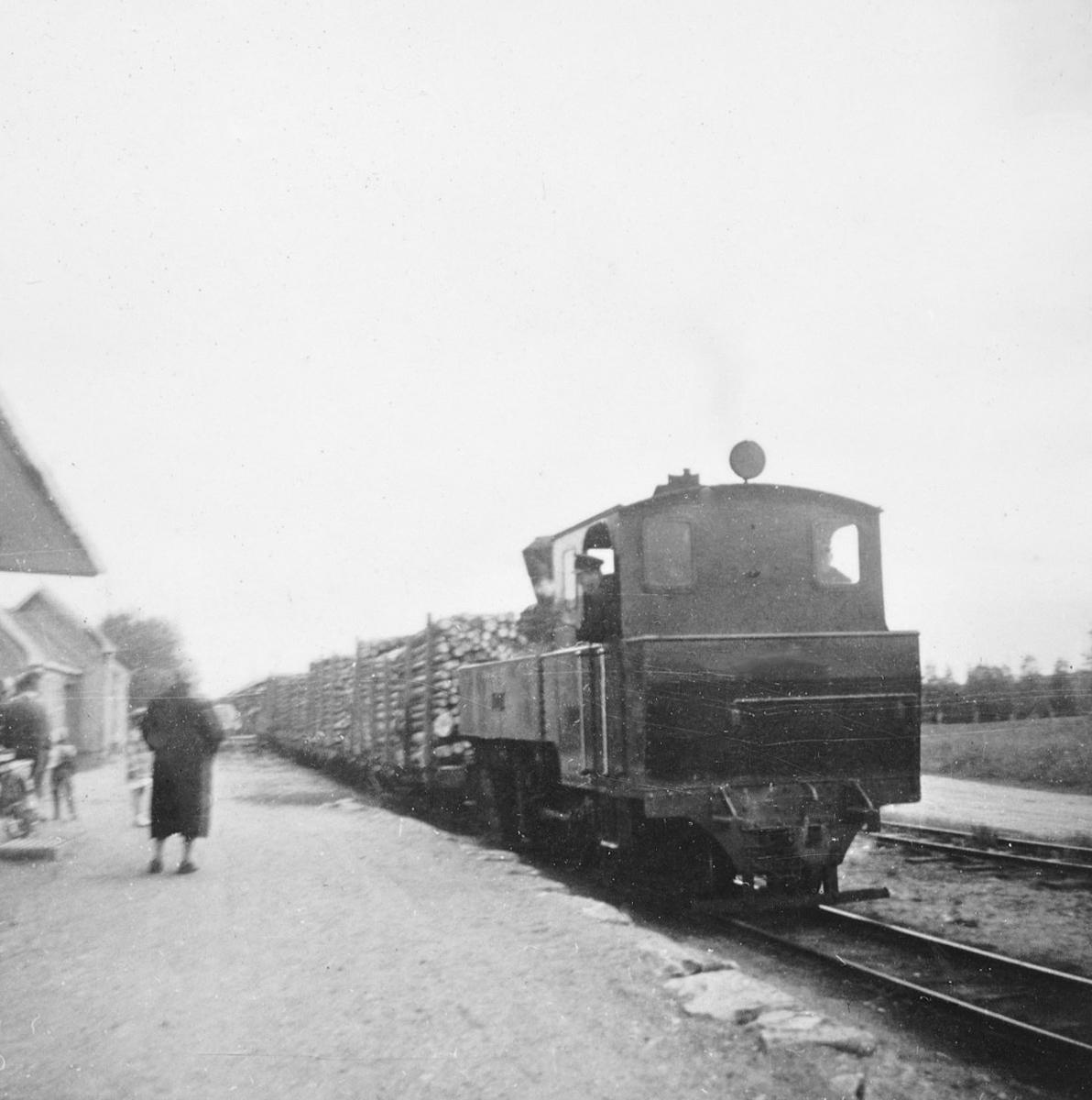 Damplokomotiv XXIXb nr. 7 PRYDZ med tog til Skulerud på Lierfoss stasjon. Fremst i toget fullastede tømmervogner