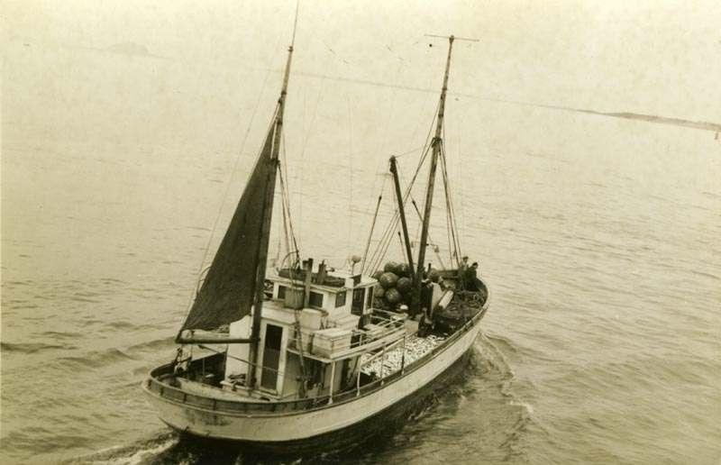 Fiskeskøyte