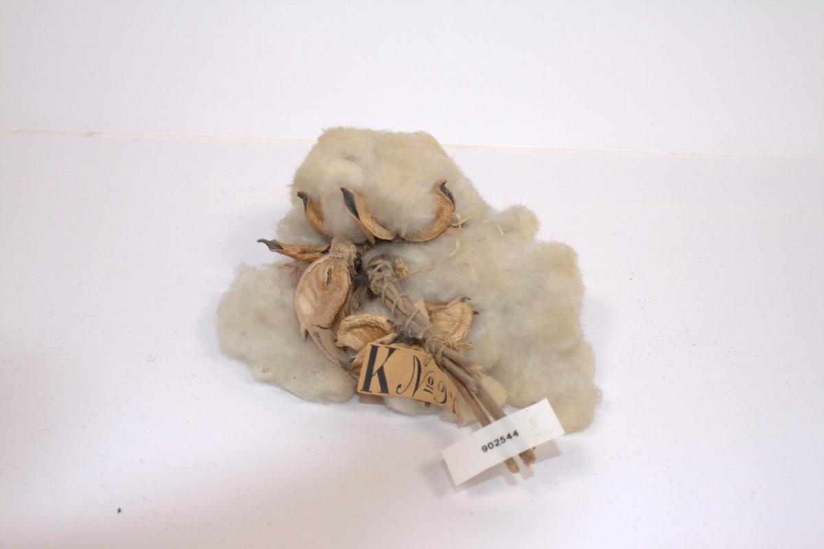 Gjenstanden var en del av den opprinnelige samlingen til Marinemuseets grunnlegger, C F Klinck, men mangler ytterligere forklaring.