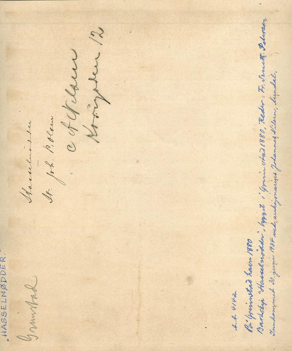 """Fartøybilder fra Agder  """"Livingstone"""" Type: bark  Bygget: 1872 i Grimstad Drektighet: 427 nrt Eiere: A. Nielsen, Arendal, N. Jacobsen og A. Ribe, Grimstad Hjemmehavn: Arendal, fra 1889 Grimstad  Kjennetegn: HWFD Kilde: Fartøybilder boks 45, AAA Neg. nr. 276 Baksidetekst: Capt. P. J. Bowitz. 1875. Sign. C. L. Weyts, 1875. Olje på undersiden av glass, bakgr. olje på kartong. Foto stemplet Selmer Norland & Co, Arendal.'  Opprinnelig filreferanse i eDepoet: F0121_Fartøybilder-SMW_090525\LIVINGSTONE I"""