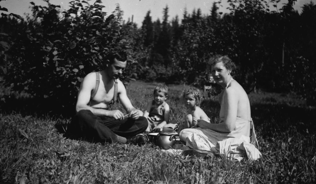 Vi plukker stikkelsbær i haven på Fredheim skole august 1938.