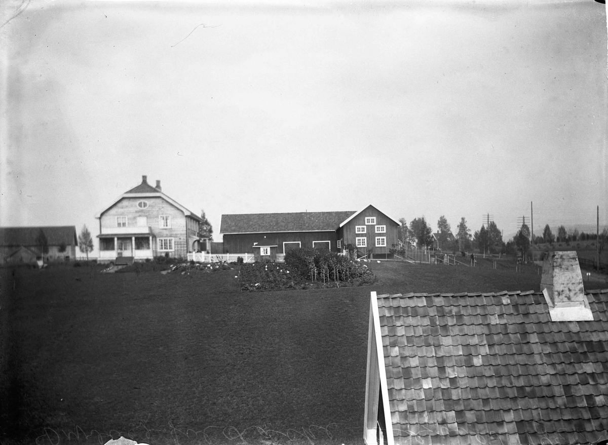 Dyrlege Jul Laake, gård 1924