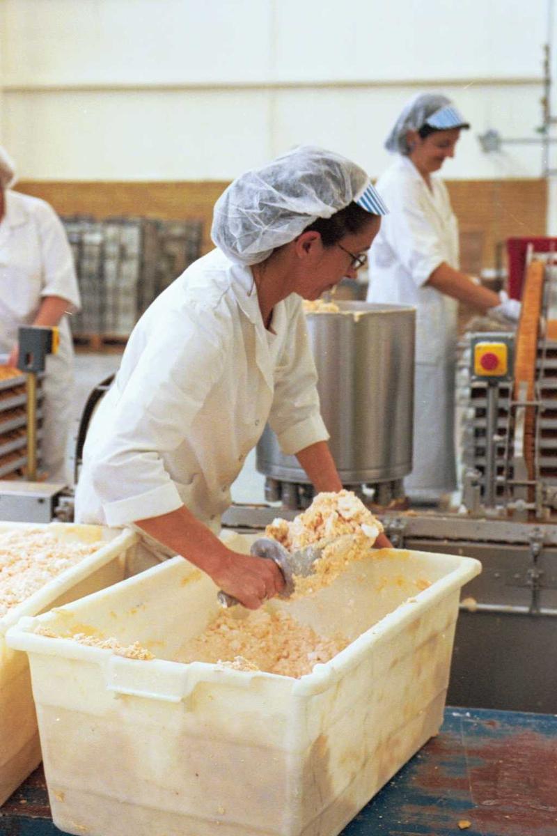 Pepitakjeks, krem, maskiner, arbeider, kvinne, arbeidsmiljø, arbeidstøy, fabrikkmiljø