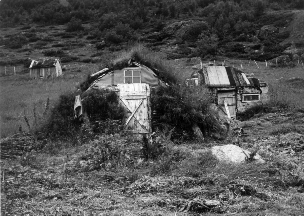 Fjøsgamme i Hellemofjorden, 1964.