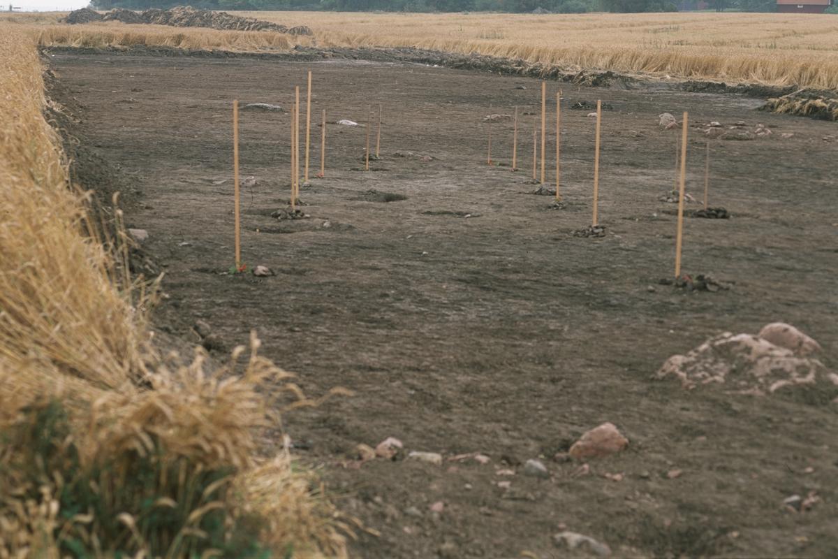 Arkeologisk undersökning, Ekeby, Vänge socken, Uppland 1998