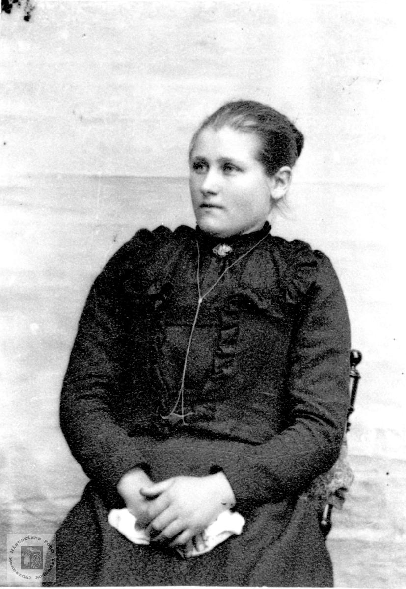 Portrett av ukjent dame trolig med tilknytning til Øyslebø området.