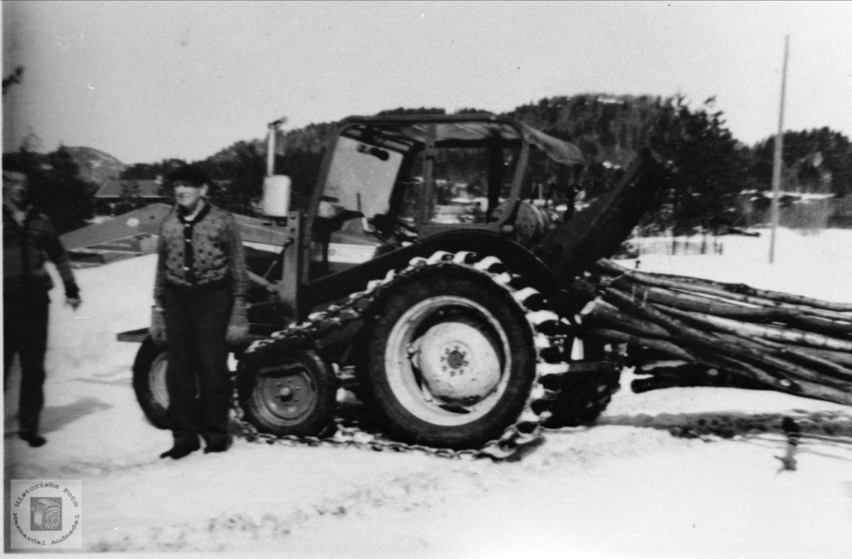 Skogsarbeid på Heddeland, Øyslebø.