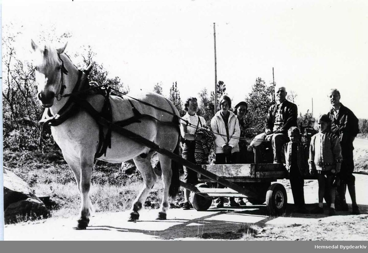 Ingvar Flaten og byfolk på Eikrestølane i Hemsedal kring 1970