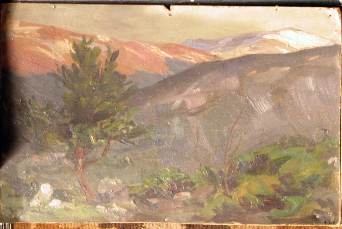 Rektangulært. Skisse; grønt fjell-landsk., tre i forgr, tilv. i bakgr. delvis røde åser.