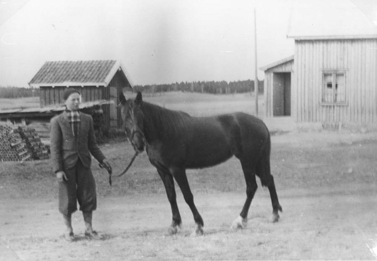 Gutt med hest, hus i bakgrunnen.
