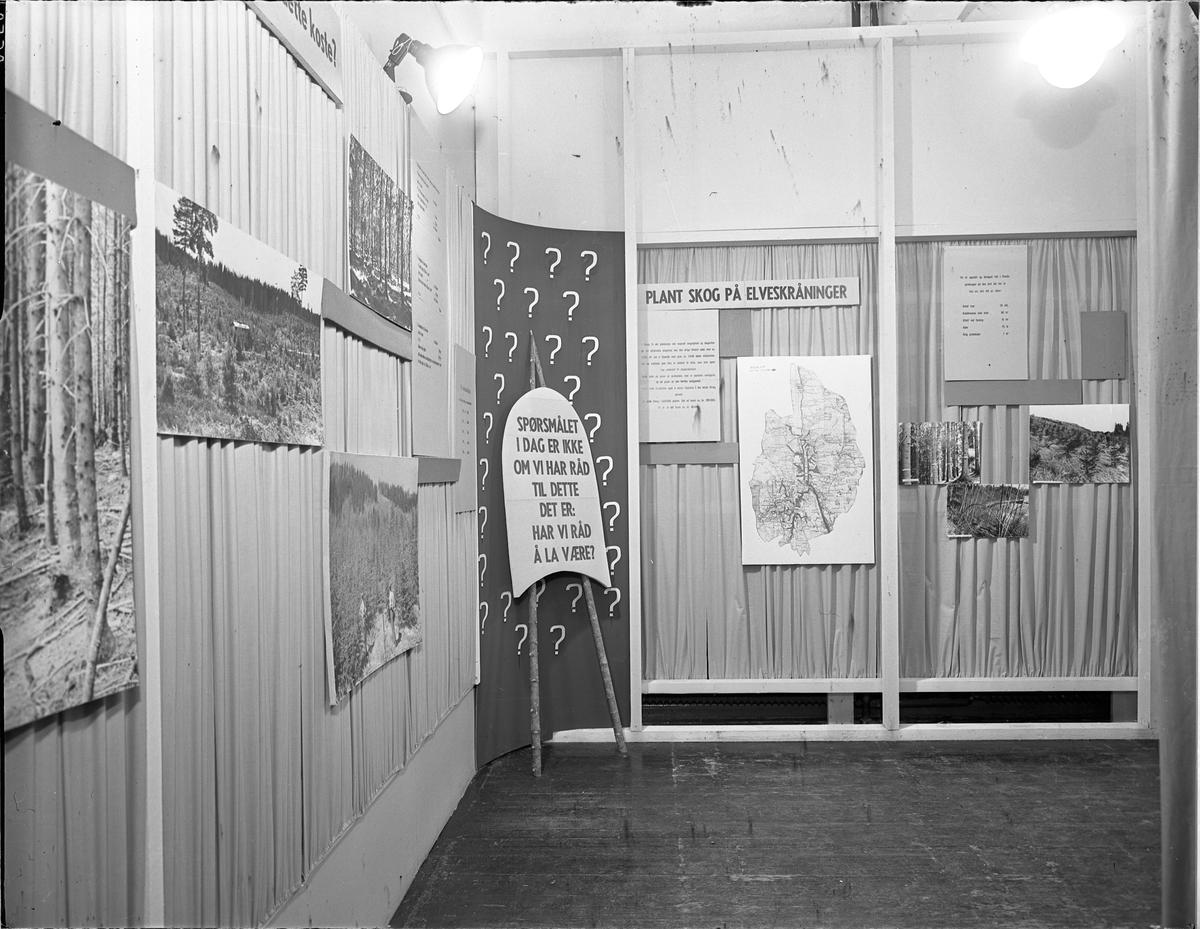Fra Eidsvoll Bygdeutstilling i 1955.  Stand om skogplanting.