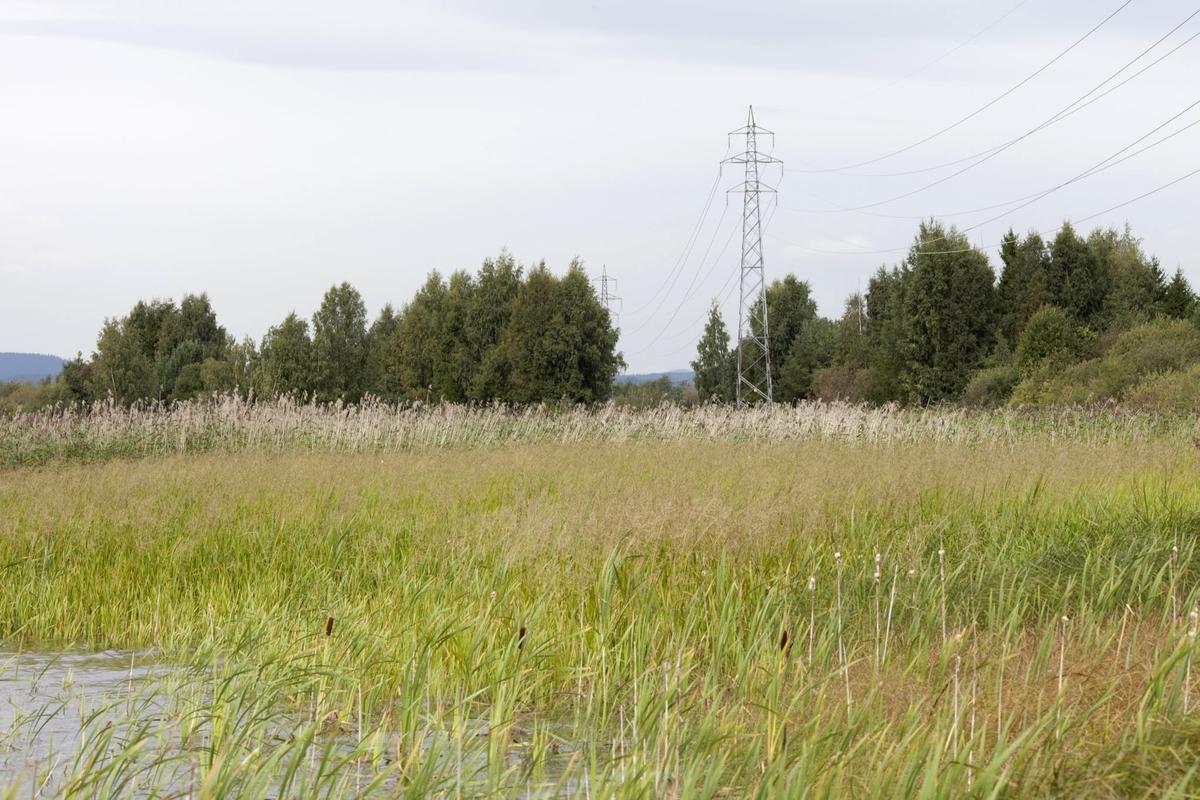 Høyspentmaster i Akershus. Høyspentmaster ved Elvestrand i Fet kommune. Fotografiet er tatt mot nord/vest.