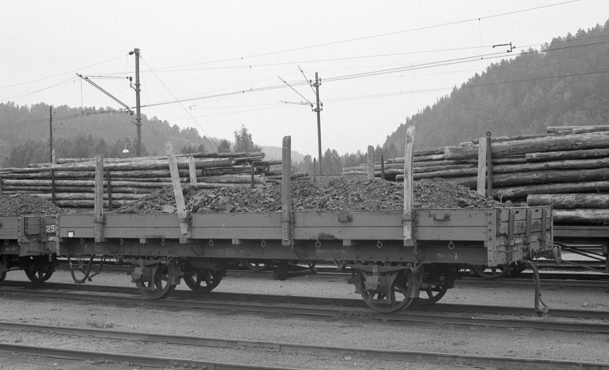 Setesdalsbanens N-vogn nr 665